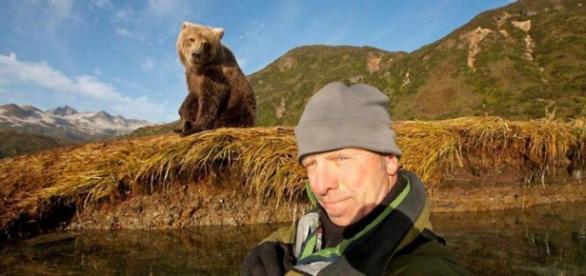 Selfies demasiados cerca de los osos