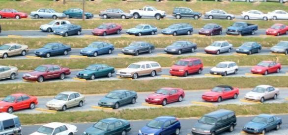 Sursa fotografie: http/www.iovi.ro