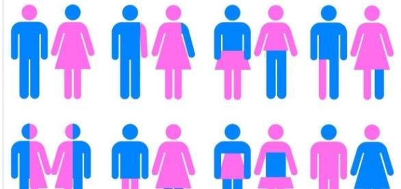 Gender identity- płeć kulturowa