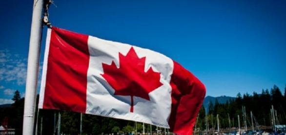 Vagas para enfermeiros no Canadá