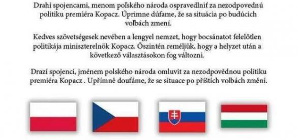 Oświadczenie polskich internautów