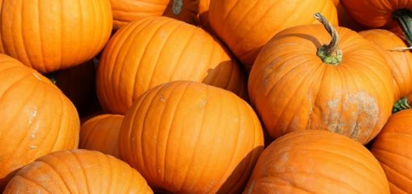 L'autunno è la stagione delle zucche