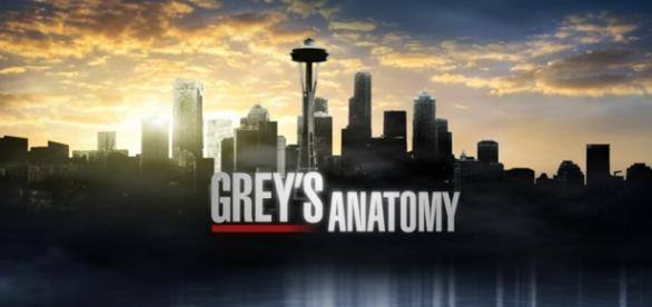 Grey's Anatomy esordisce oggi 24/09 negli USA