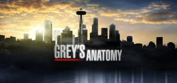 Grey's Anatomy 12: news prime due puntate