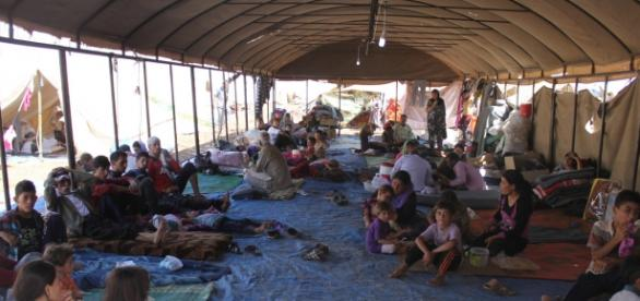 Solo en Alemania se esperan 800 mil refugiados
