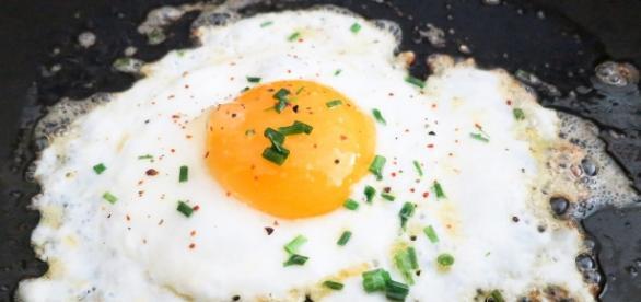 Estudo sugere que refeição com proteína emagrece