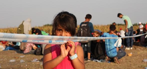 Refugiaţi http://www.unhcr-centraleurope.org/