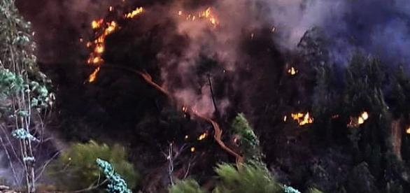Momento da destruição registado por José Mendes