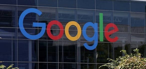Google e os talentos brasileiros. foto: divulgação