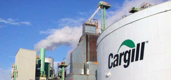 Vaga de Analista de Transporte para a Cargill