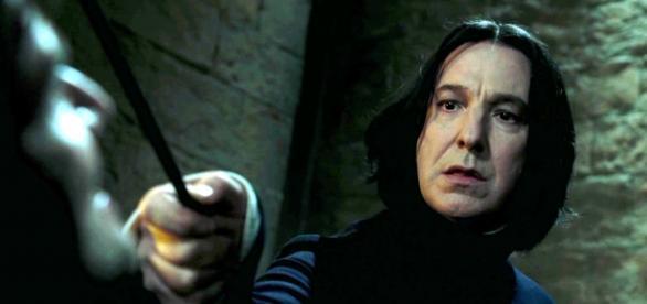 Fãs de Harry Potter estão desolados.