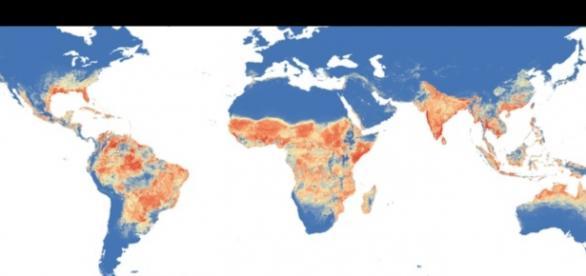 Obszary występowania wirusa Zika