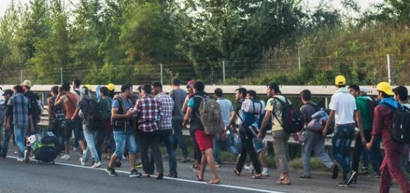 Niekończąca się fala imigrantów