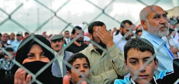 Refugiados sem saberem para onde vão