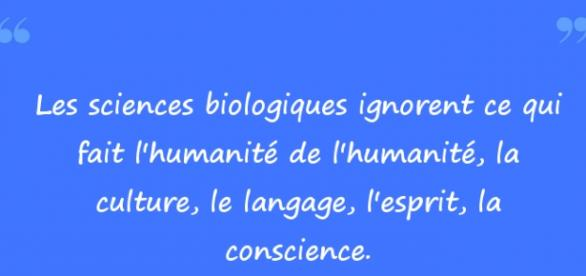http:/citation.populaire.com/quote/edgar-morin-24
