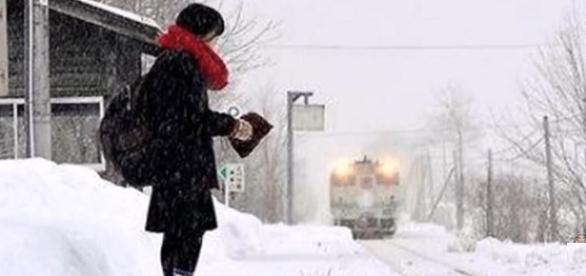 La chica japonesa del tren Inside