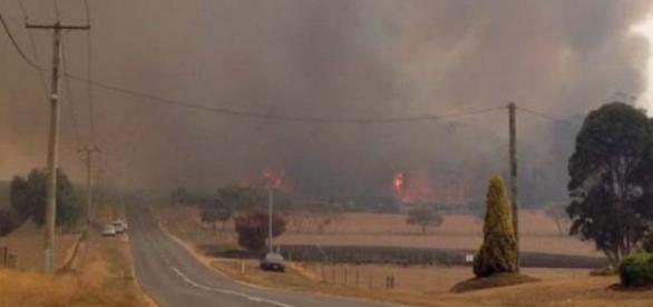 Incendios en Tasmania (foto: ABC news)
