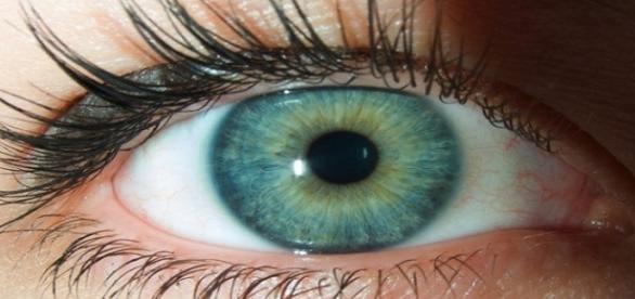 O que a cor dos olhos revela sobre você