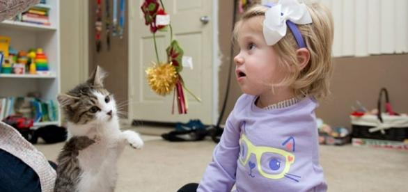 Criança amputada e gato sem uma pata são amigos