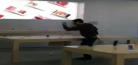Rapaz entra na loja e começa a destruir aparelhos (Twitter/Mirror)
