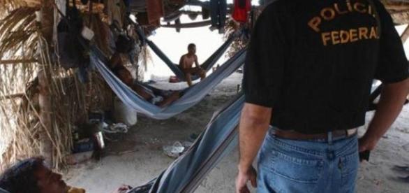 Policiais federais em ação contra o trabalho escravo