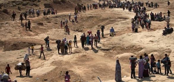 Civis podem deixar Mossul nos próximos dias