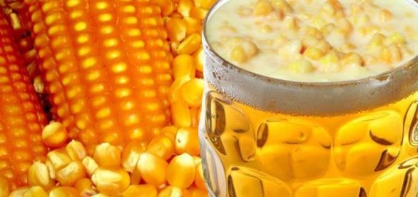Diretor geral da AMBEV causa polêmica ao apoiar cerveja com milho e arroz