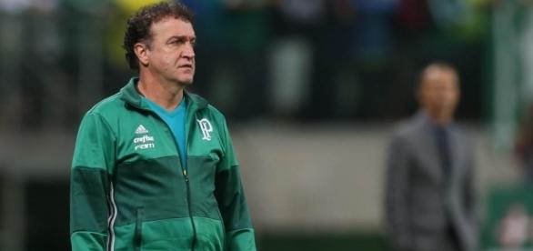 Técnico Cuca da equipe do Palmeiras.