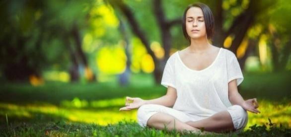 Meditação: encontros com a Natureza e com o seu próprio ser. Cura para a pressa ocidental.