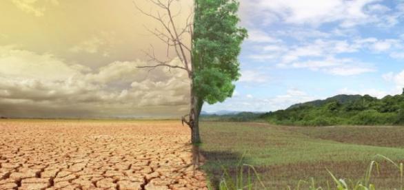 El cambio climático y El Niño causarán hambruna a 10 millones de personas en el mundo entero