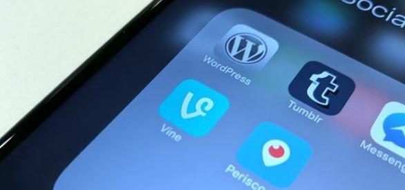 Vine is a popular mini-video sharing app owned by Twitter (The Guardian).