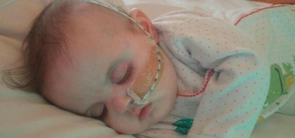 Marnie, de 21 semanas, aguarda por um coração
