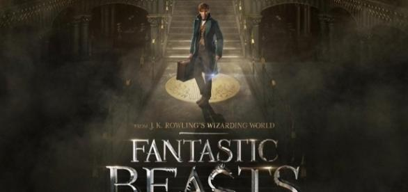 News Report Center : New 'Fantastic Beasts' Trailer Brings ... - newsreportcenter.com