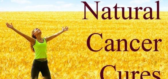 10 Best Natural Cancer Cures That Have Saved Thousands of Lives ... - thebigriddle.com