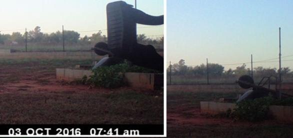Estrutura fotografada ao lado de um carrinho de obras. Clique na imagem para ver o antes e o depois (MUFON)