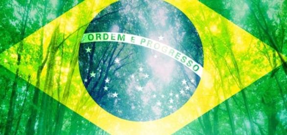 Sustentabilidade no Brasil: questão ambiental ou econômica?