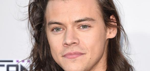 Harry Styles está investindo em sua carreira como cantor solo