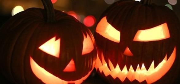 Aboboras são símbolos do Halloween