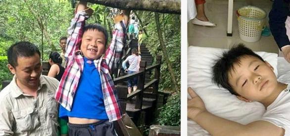 Cao pai e Cao filho se divertindo nas férias