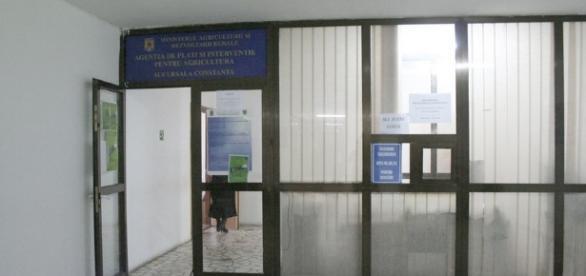 Curtea de Conturi a României -activitate