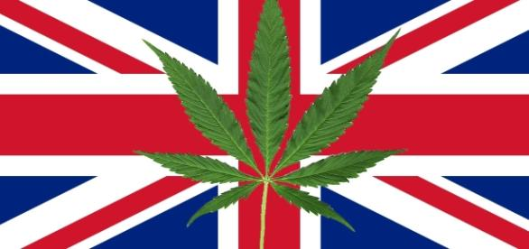 How Legalising Weed Would Save Britain Billions | VICE | United ... - vice.com