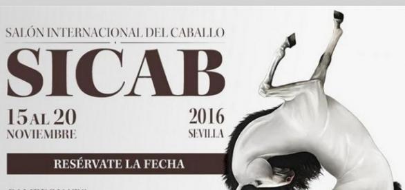 Sicab se celebrará del 15 al 20 de noviembre   Temas de cría ... - ecuestre.es