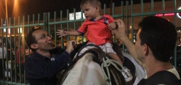 Cavalos furtados já foram encontrados