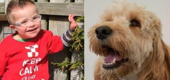 Riley e o cachorro herói - Google imagens