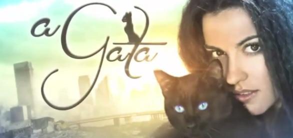 A Gata é exibida nas tardes do SBT