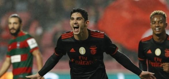 Gonçalo Guedes tem estado em grande forma no SL Benfica