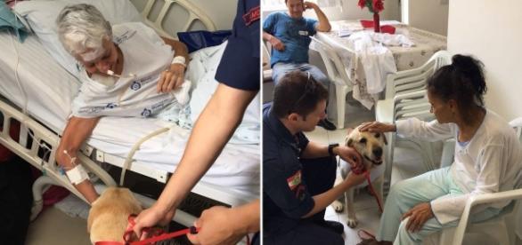 Sempre acompanhado de um oficial do Corpo de Bombeiros, Ice faz visitas semanais ao Hospital Marieta.