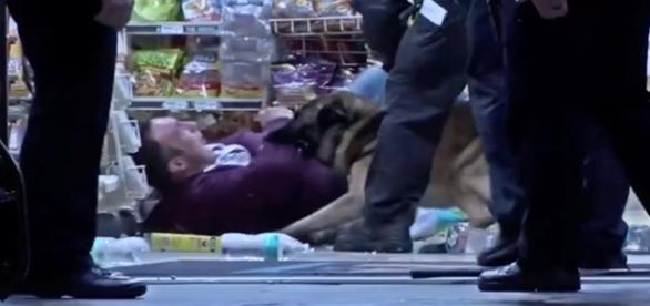 Cachorro mordeu diversas vezes o fugitivo.