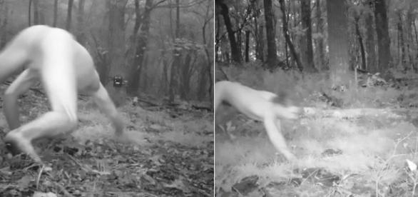 Imagem de homem correndo pela mata acreditando ser um tigre