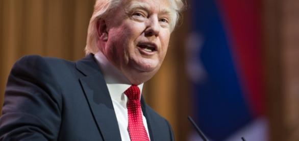 Donald Trump|shutterstock|thefederalist.com